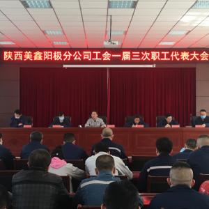 阳极分公司工会召开一届三次职工代表大会