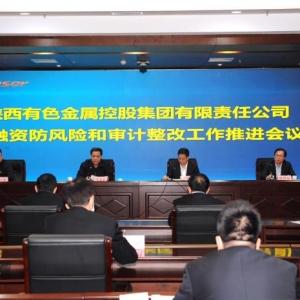 陕西有色集团推进投融资防风险和审计整改工作