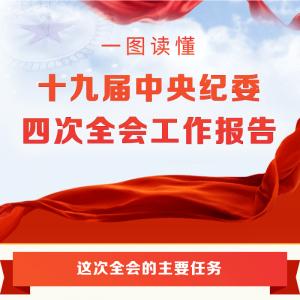 十九届中央纪委四次全会工作报告
