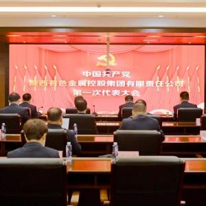 中国共产党如何买球赛有色金属控股集团有限责任公司第一次代表大会召开