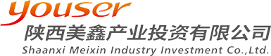 陕西千亿国际产业投资有限公司